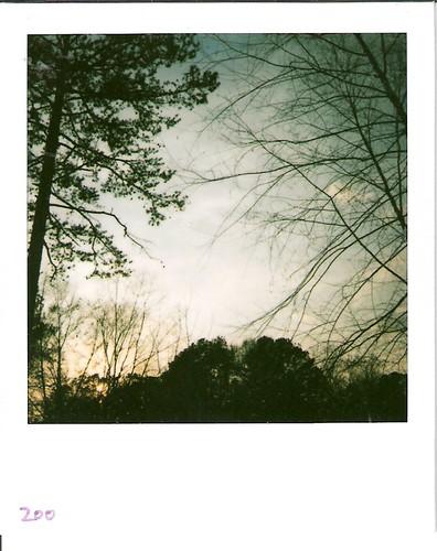 polaroid 600film