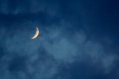 Moonzorz