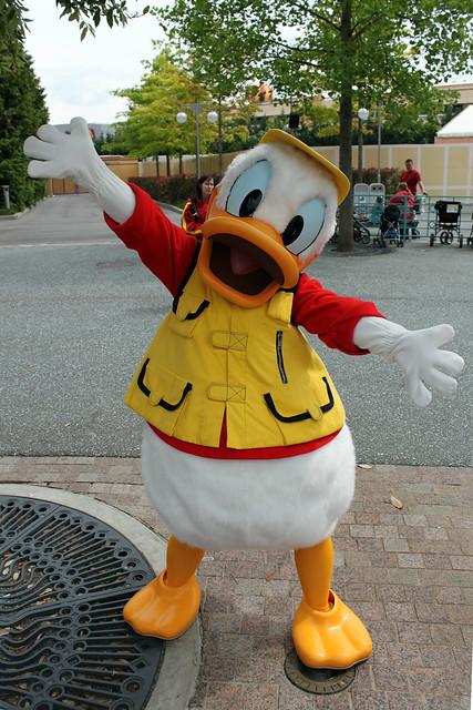 Meeting Studios Donald Duck