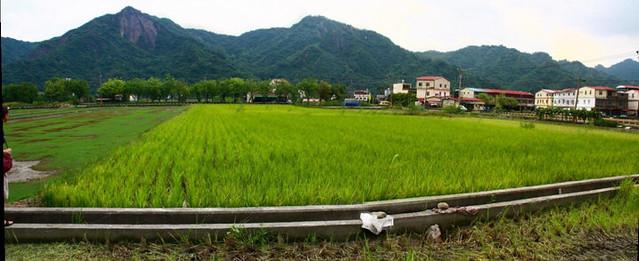 美濃農村社區景觀。圖片來源:台灣農村陣線。