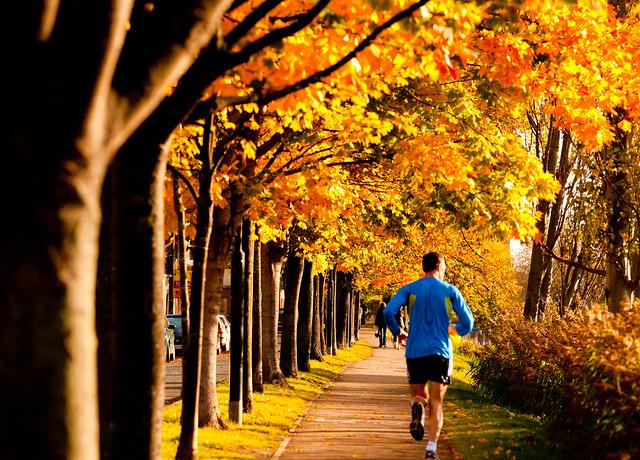 व्यायामात् लभते स्वास्थ्यं दीर्घायुष्यं बलं सुखं। आरोग्यं परमं भाग्यं स्वास्थ्यं सर्वार्थसाधनम्॥
