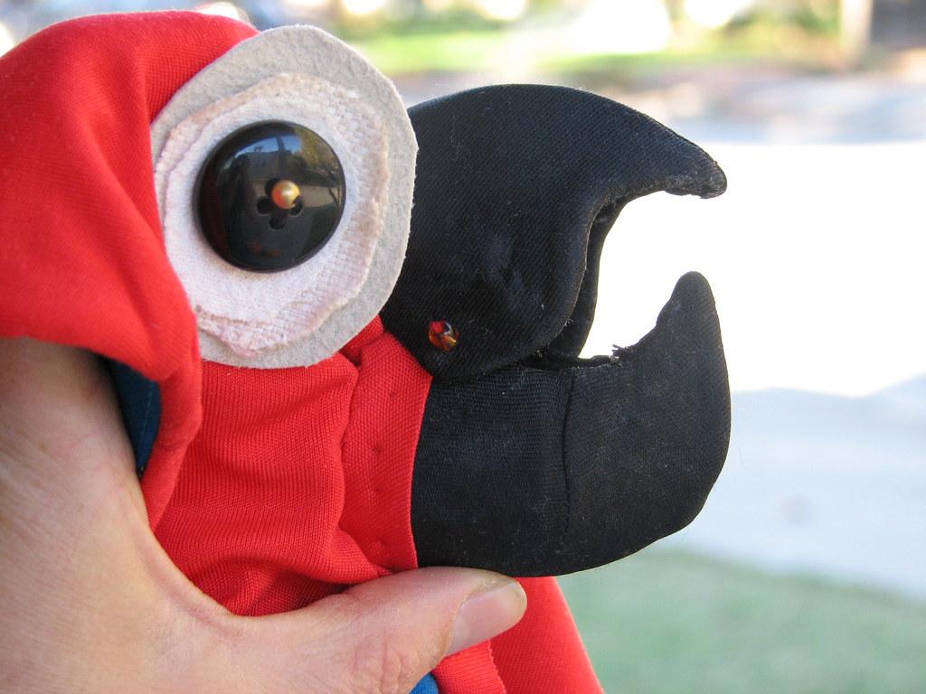 Amelia's parrot costume