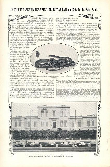 Ilustração Portugueza, No. 468, February 8 1915 - 30