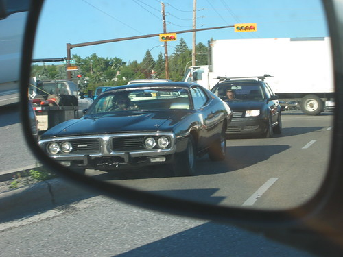 Muscle Car (4)