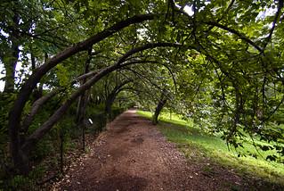 Reservoir Path