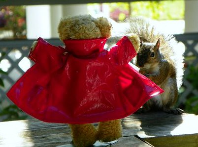 Flasher teddy bear flashes a squirrerl