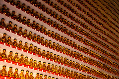 Get to see 13,000 Buddhas under one roof at Thousand Buddhas Monastery - Things to do in Hong Kong
