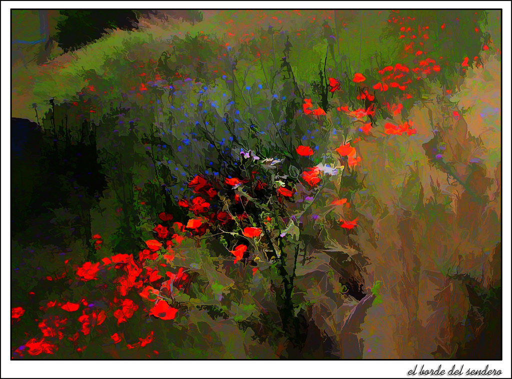 bordes floridos