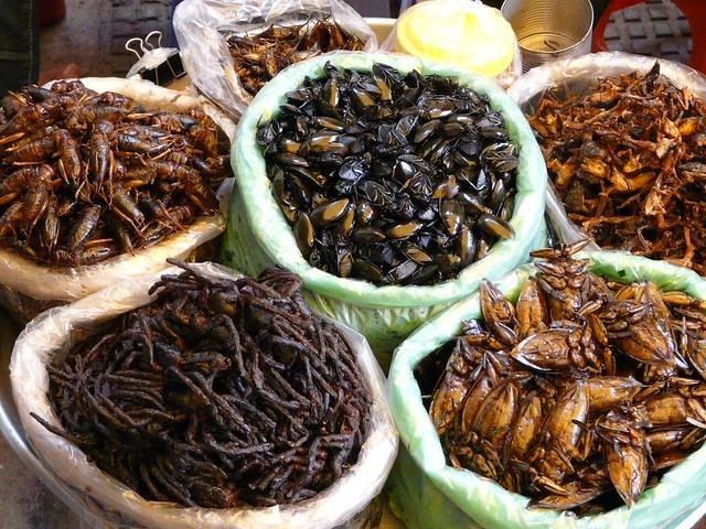 Insectos para comer en Camboya