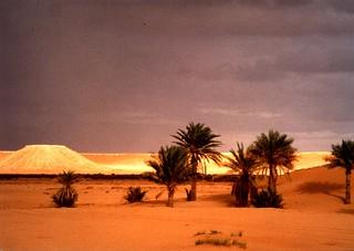 Duna dorada en Argelia