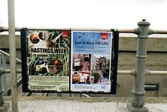Hastings & Festival 2006