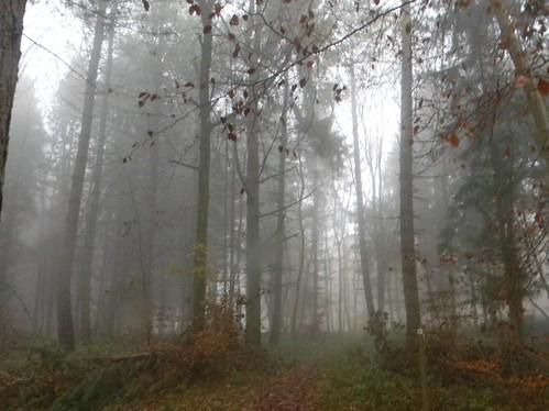 The mist deepens....