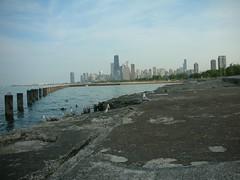 A Sea Gull's Paradise