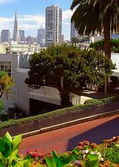 San Francisco - Lombard Street & Transamerica Building