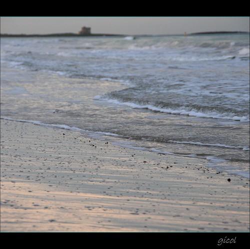 ocean park parque sea italy parco tower focus italia mare waves torre dof br foam puglia pdc onde espuma apulia schiuma naturale holas bagnasciuga guaceto turre apani