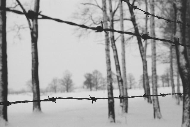 Barbed Wire, Nikon F3