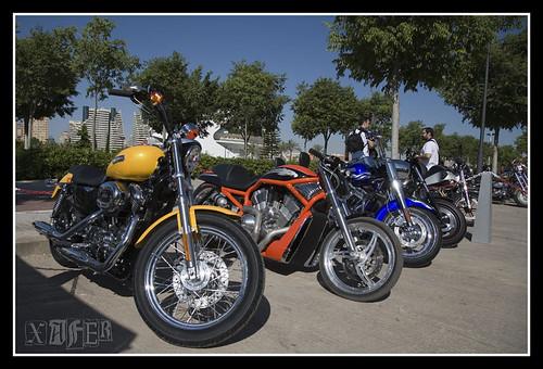 Harley-Davidson-25