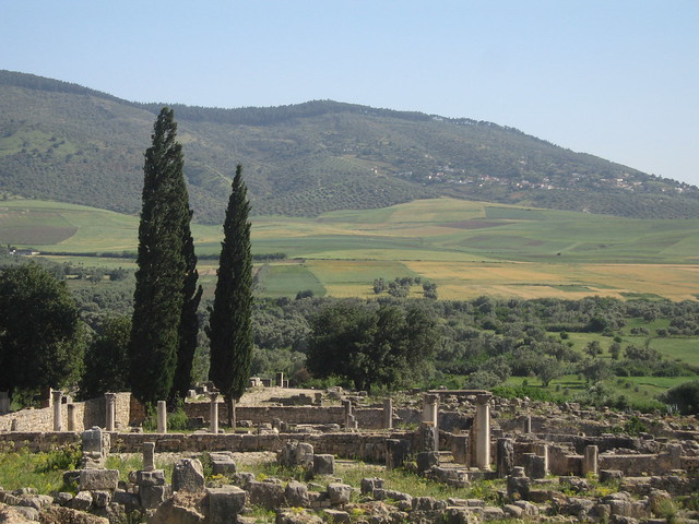 Volubilis in rure - looking south from the Capitol