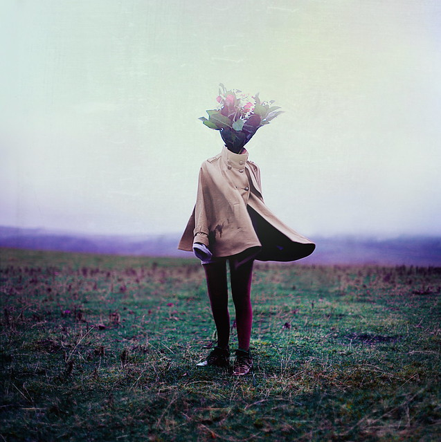 rosiehardy - A Bouquet of Imagination