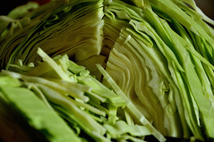 Green Cabbage 4