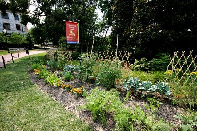 Educational Garden Project