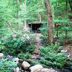 Matts Creek Shelter