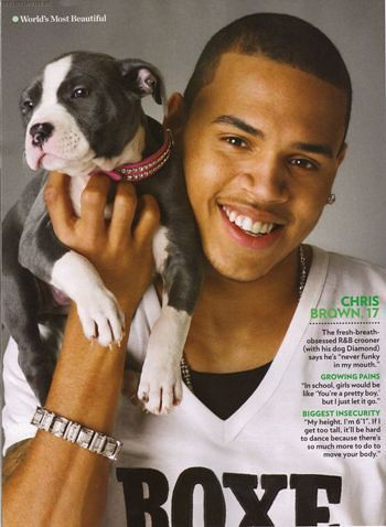 Chris Brown Pitbull
