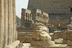 Luxor temple (2007-05-373)