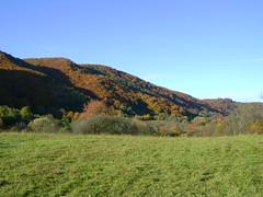 toamna la preluca/autumn at preluca