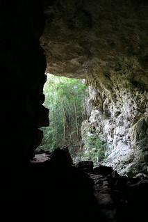 Obrázek Rio Frio Cave u Cayo District. vacation honeymoon belize cave cayo riofriocave riofiocave dopplr:explore=eej1
