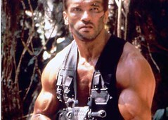 arm, chest, muscle, action film, bodybuilding,