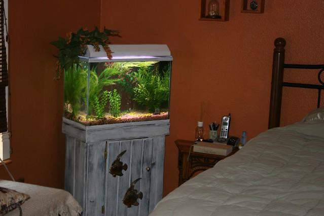 Bedroom Aquarium Flickr Photo Sharing