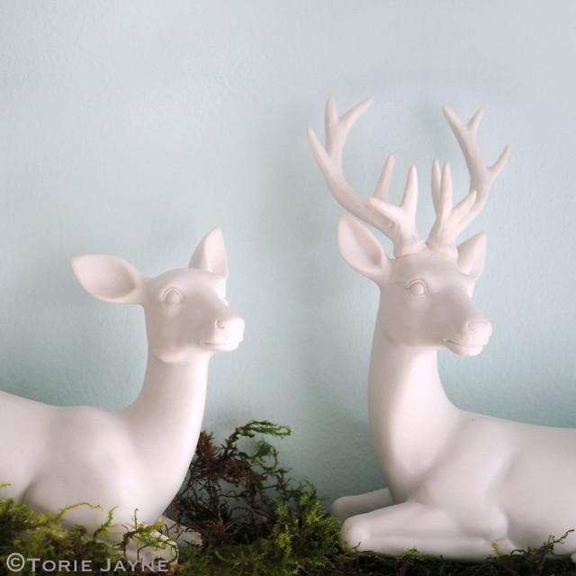 Deer, Reindeer