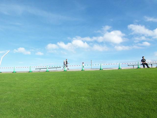 横浜港大桟橋屋上庭園
