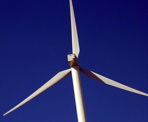 california green ecology birds geotagged tv energy power alternativeenergy environment kqed pbs raptors turbines altamont sanjoaquinvalley birdstrike sanjoaquincounty kqedquest geo:lat=377388413088189 geo:lon=121616501143426 enxco
