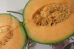 cantaloupe, vegetable, honeydew, produce, fruit, food, muskmelon, melon, cucurbita,