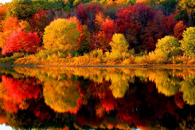 Fall Foliage New England Wallpaper http://www.flickr.com/photos/53624026@N06/5098441910/