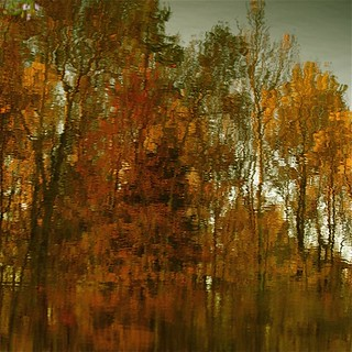 Reflection of reflection...!!!