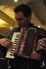 accordion, musician, musical instrument, music,