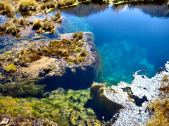 coral reef, stream, water, nature, tide pool, body of water, reflection, landscape,