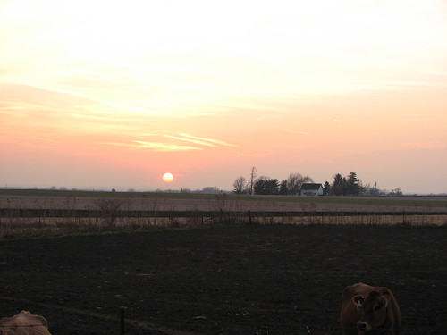 Town of Beetown, Wisconsin - Sunset
