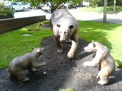 bear sculpture at the lake oswego, oregon public lib…