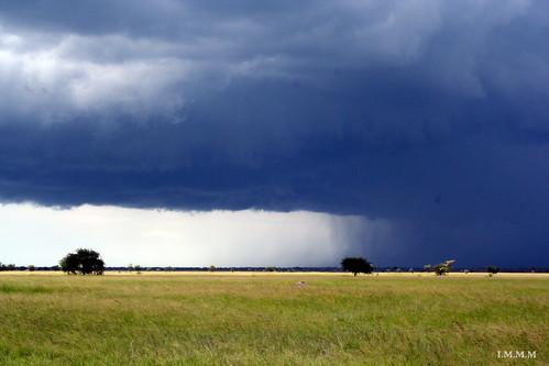 Soon rain
