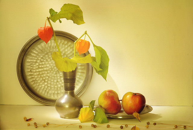 Still Life with Physalis & Apples