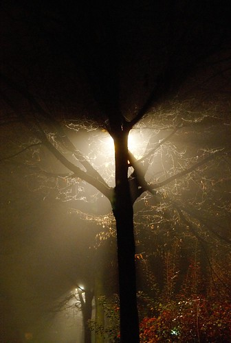 zigazou76 flickr