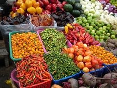 chili pepper - ají