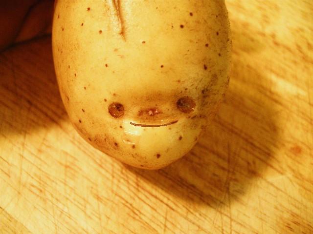 how to make a potato camera