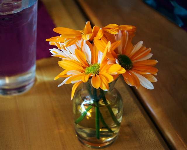 Advantage Car And Credit >> Orange flowers in small vase | Flickr - Photo Sharing!