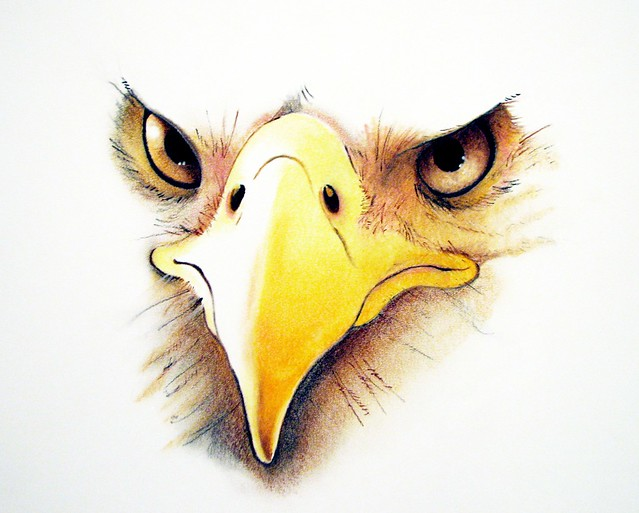 Small Eagle Drawing Medium 640 × 513