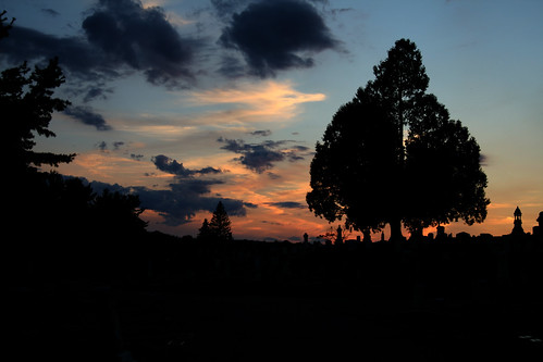 sunset cemetery silhouette kitlens commonplaces fitchburg canonefs1855mmf3556iiusm foresthillcemetery rebelxti fitchburgma impressedbeauty